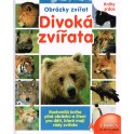 Divoká zvířata - obrázky zvířat